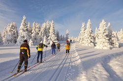 Chambres d'hôtes de charme , Activités en chambre d'hôtes , Sports et loisirs , ski-de-fond