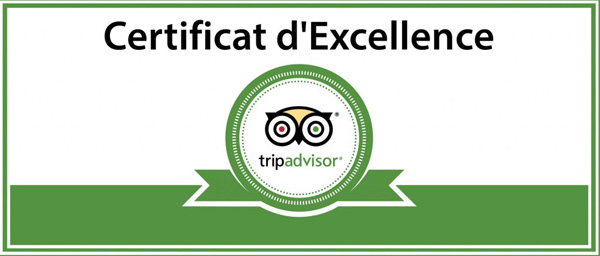 trip advisor excellence