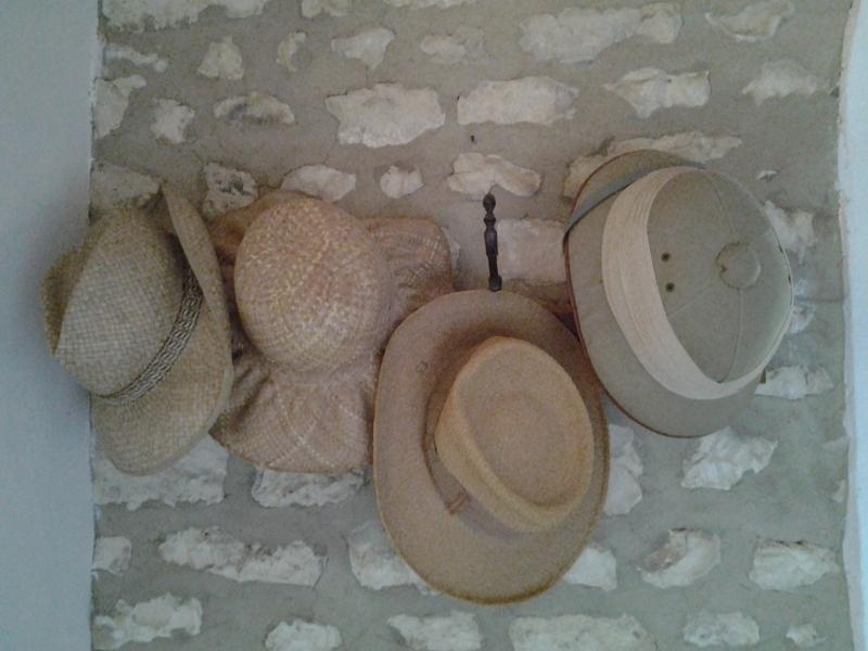 Chambres d'hôtes de Wellenstein lindry 89240 N° 2