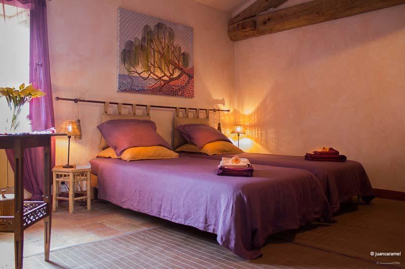 Chambres d'hôtes Luna-Paranque rognes 13840 N° 4