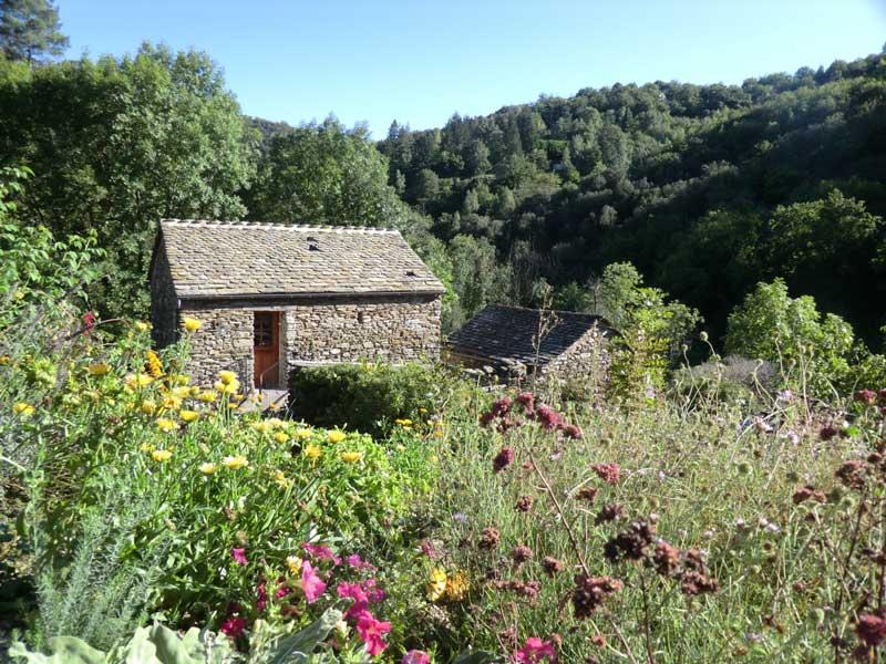 Chambres d'hôtes Mathis saint privat de vallongue 48240 N° 1