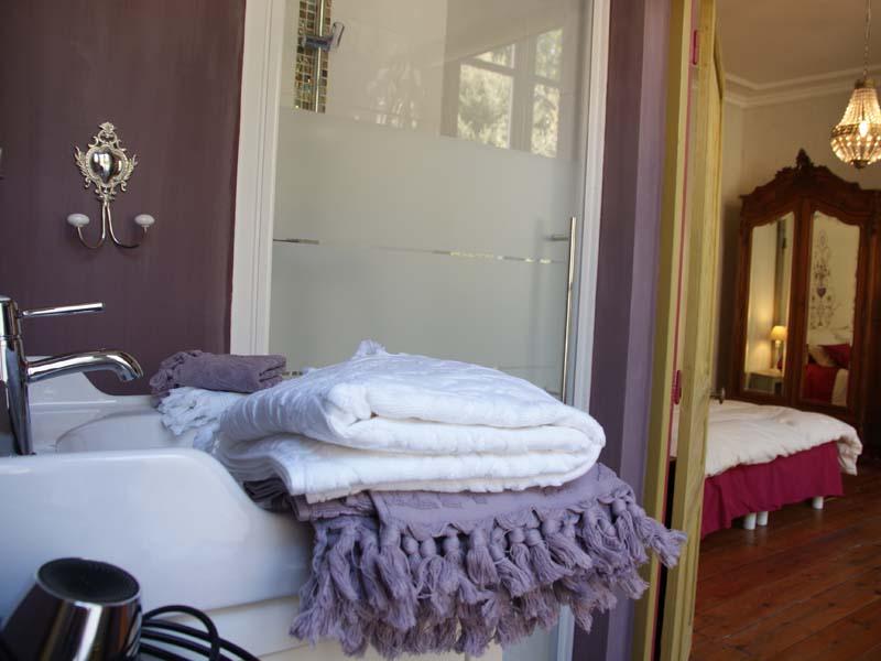 Chambres d'hôtes Blanc-Gillier fontenay le comte 85200 N° 7