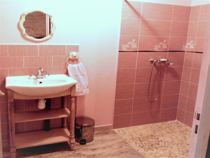 Chambres d'hôtes Camarzana andilly 17230 N° 10