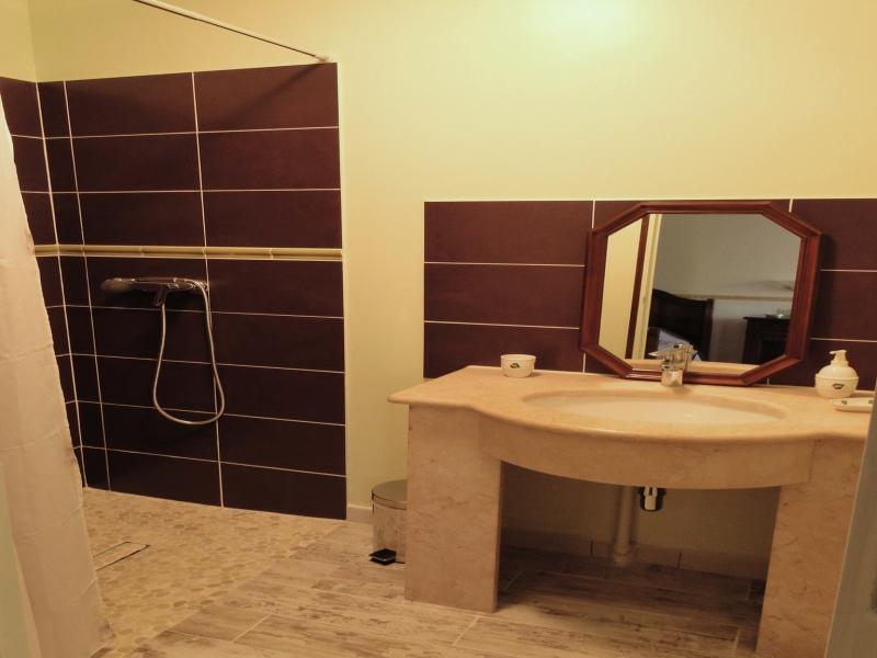 Chambres d'hôtes Camarzana andilly 17230 N° 2